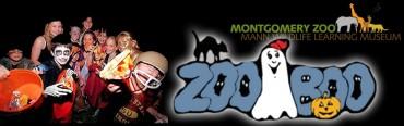 zoo-boo